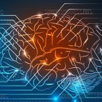 Нейрокоучинг: по законам мозга